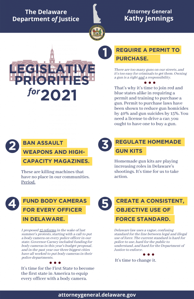 Require a permit to purchase; ban assault weapons and high capacity magazines; regulate homemade gun kits; fund body cameras for every officer in Delaware; create a consistent, objective use of force standard